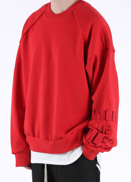 Embroidered long sleeve sweatshirt - 2 color